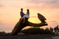 Desert Aloha Photography - Engagement - 6
